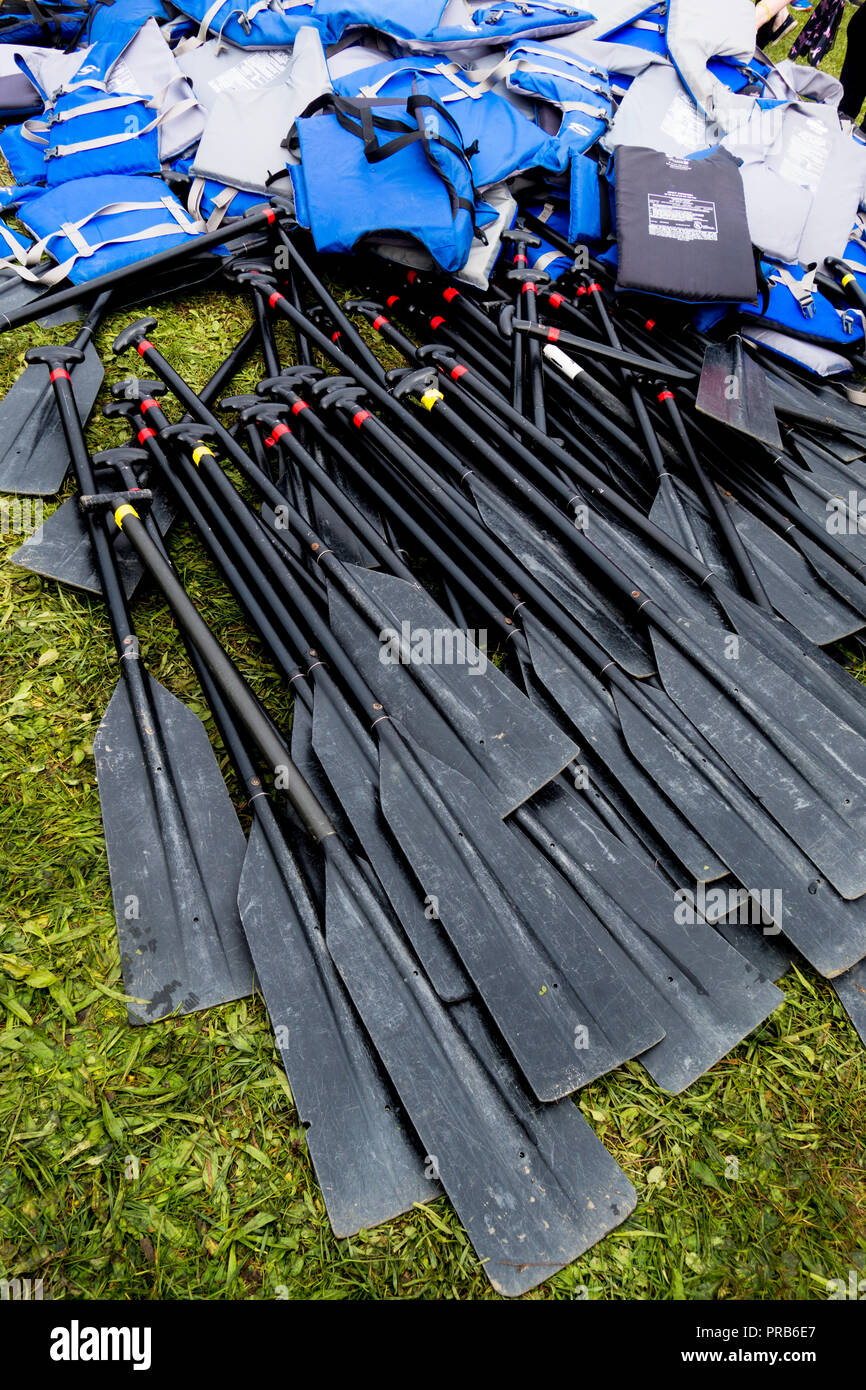 A large number of oars and life jackets lying in the grass Stock Photo
