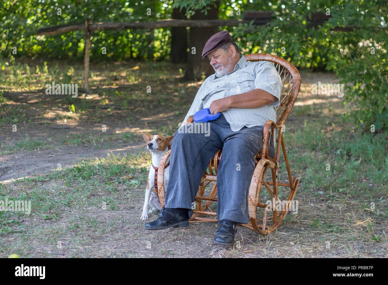 Pleasing Cute Basenji Dog Waiting Till Senior Master Rest In A Wicker Frankydiablos Diy Chair Ideas Frankydiabloscom