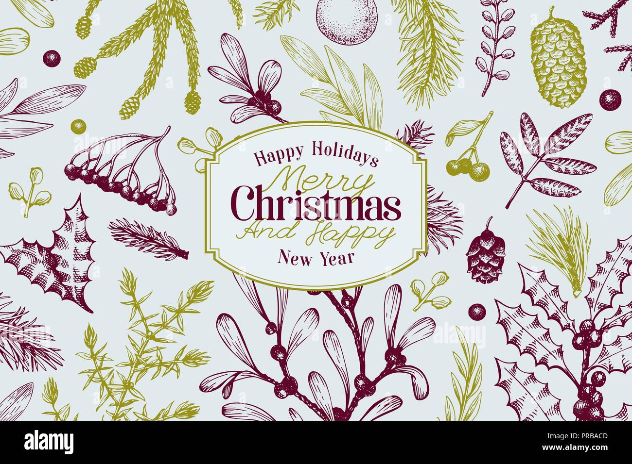 Greeting Christmas card in retro style. Vector hand drawn illustrations. Frame with coniferous, pine branches, berries, holly, mistletoe. Winter fores - Stock Vector
