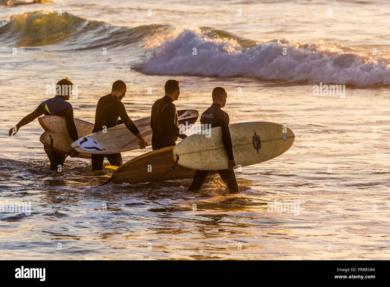 A group of surfers walking into the sea in the evening at Fistral in Newquay in Cornwall. Stock Photo