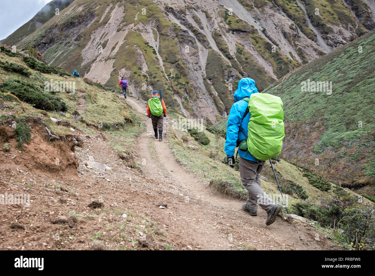 Trekkers on the trail to Lingshi down from Nyile La pass, Thimphu District, Snowman Trek, Bhutan Stock Photo