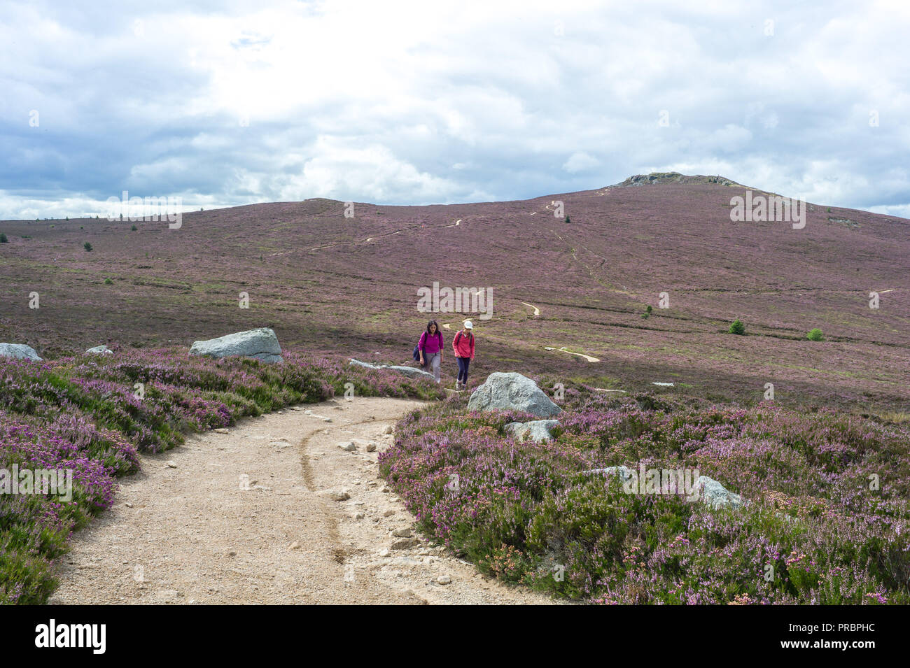 Bennachie Aberdeenshire Scotland,  Walkers on the Path between Oxen Craig and Mither Tap - Stock Image