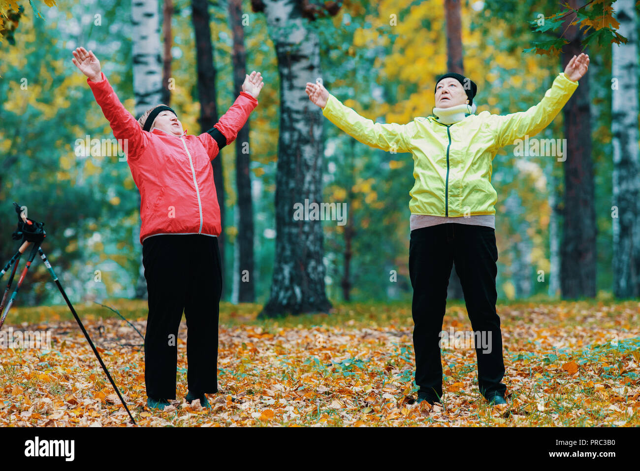 Mature woman doing gymnastics in an autumn park after a scandinavian walk - Stock Image