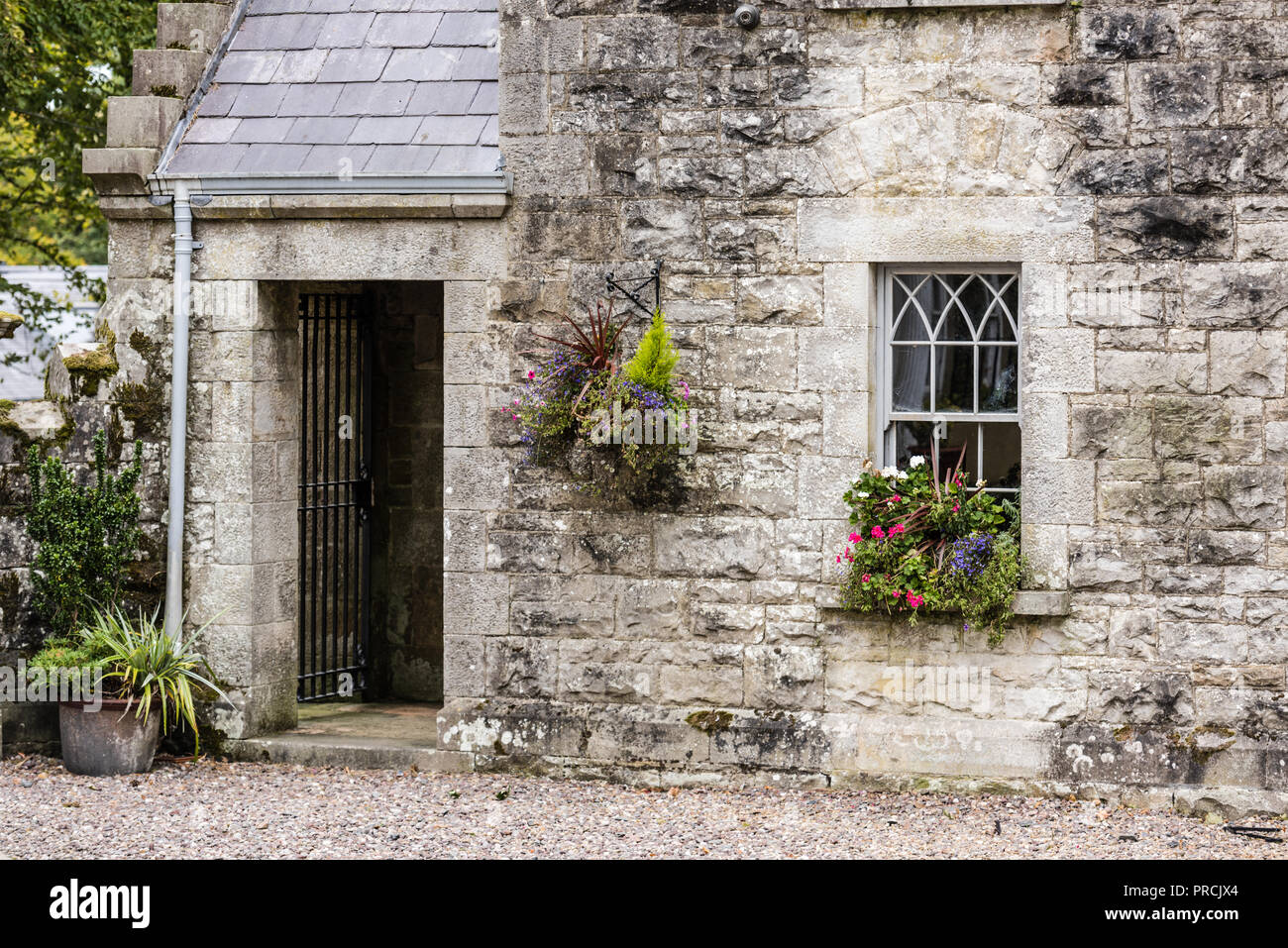 Hanging basket and window box on the stone wall of an old Irish cottage. - Stock Image
