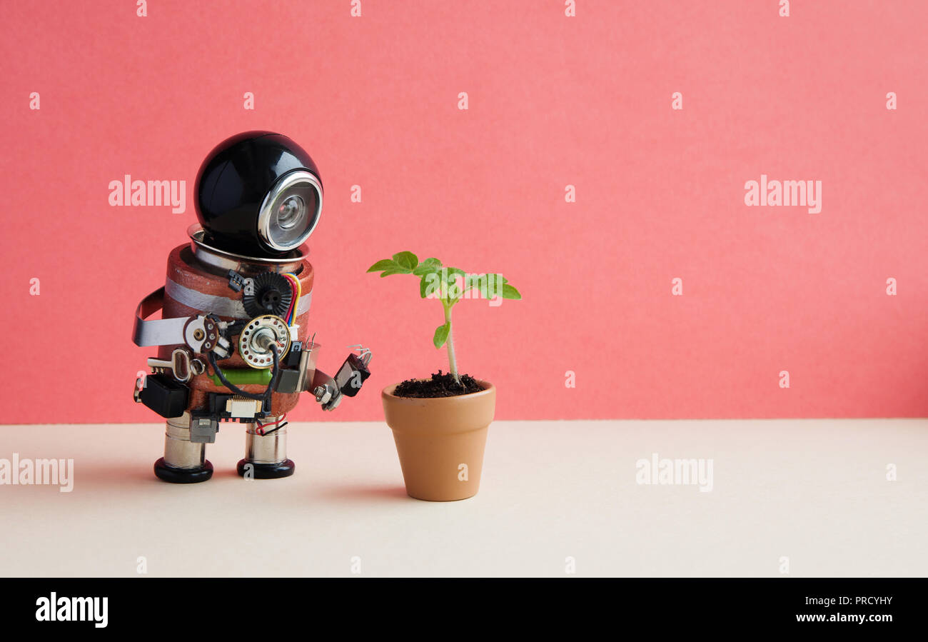 Robot with a small green sprout plant in a clay flower pot. Organic eco life concept. Pink wall background, copy space - Stock Image