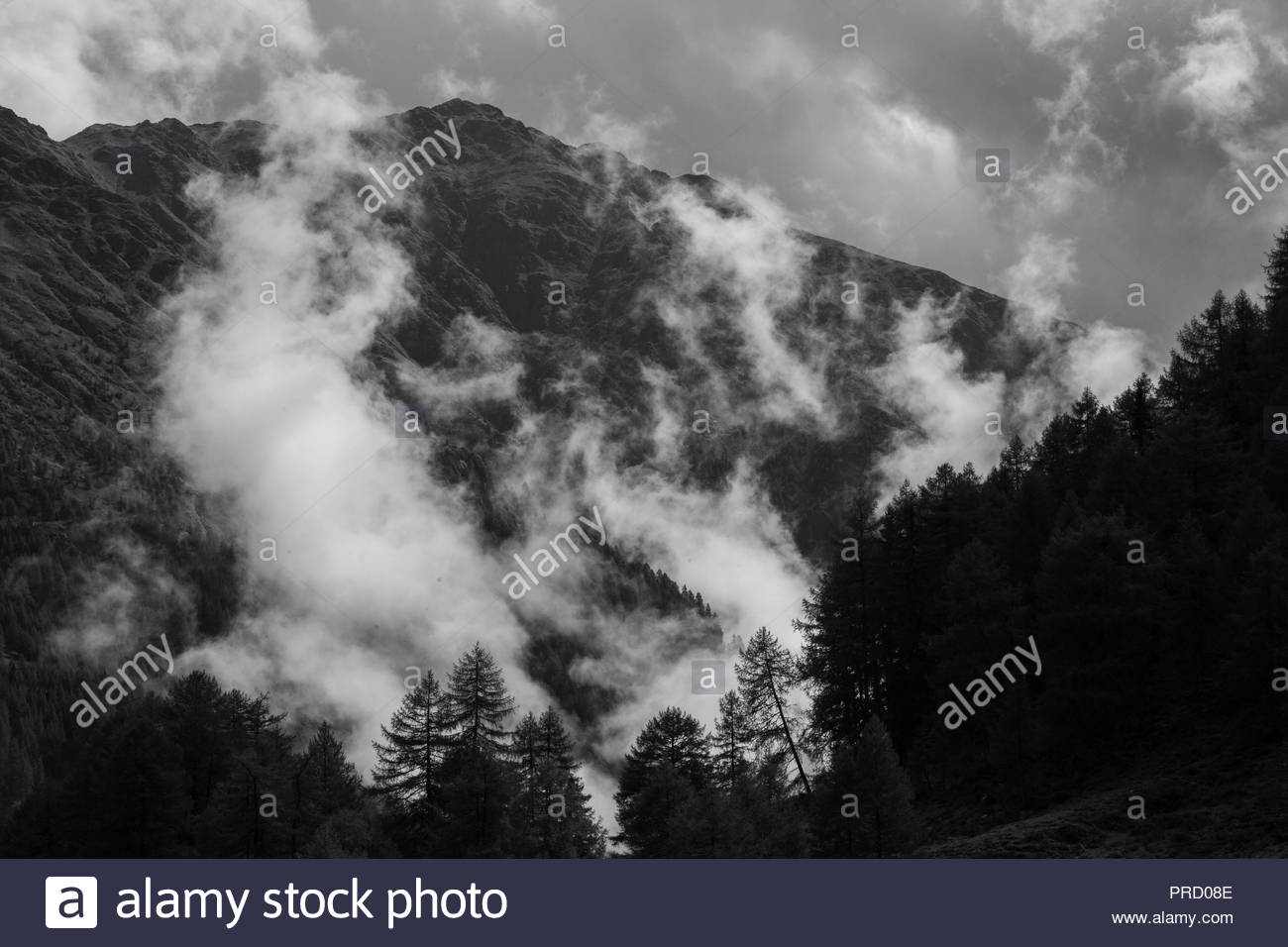 Morning fog in the alps - Stock Image