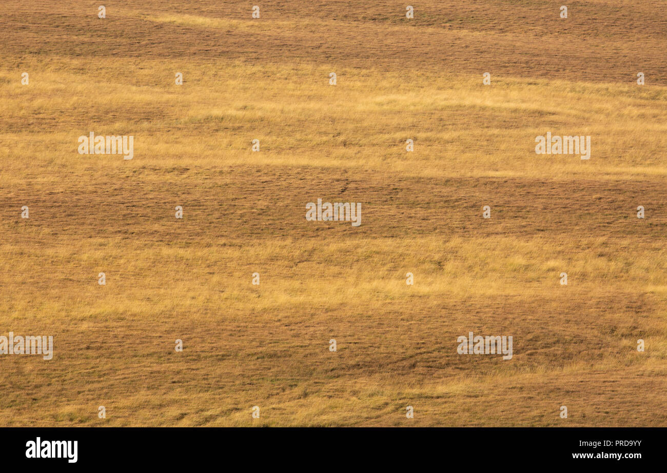 Minimalist Landscape images of the West Pennine Moors near Bolton. Landscapes without sky. Stock Photo