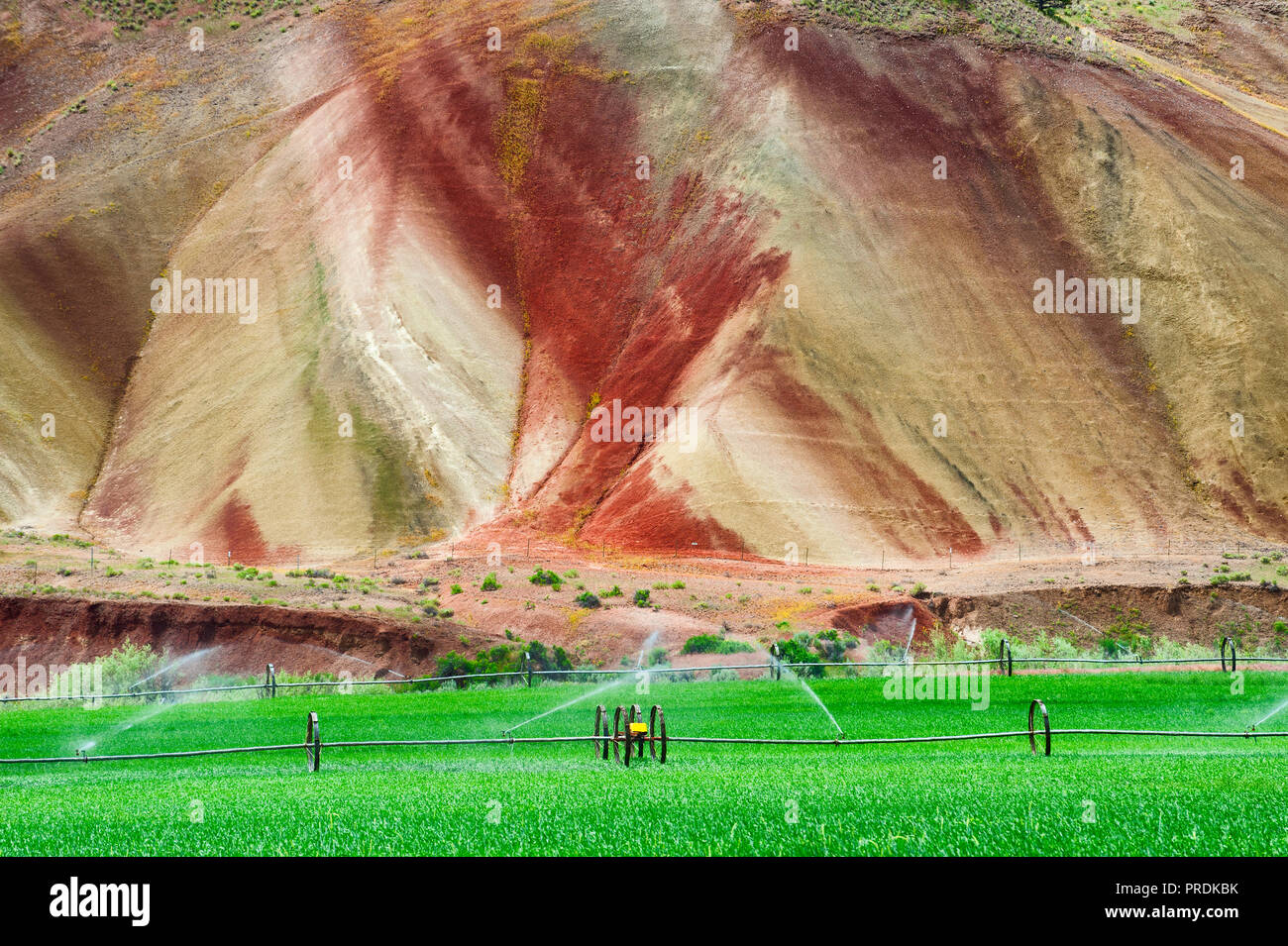 Agriculture field being irrigated at the base of a painted hill, one of  many geological features in the John Day Fossil Beds National Park - Stock Image