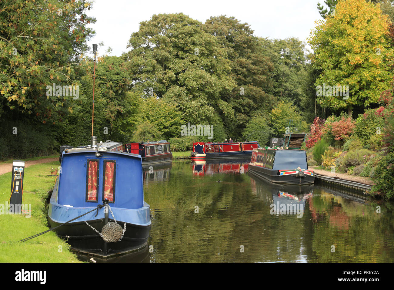 Narrow boats moored on the Staffordshire and Worcestershire canal near Kinver, Staffordshire, England, UK. Stock Photo