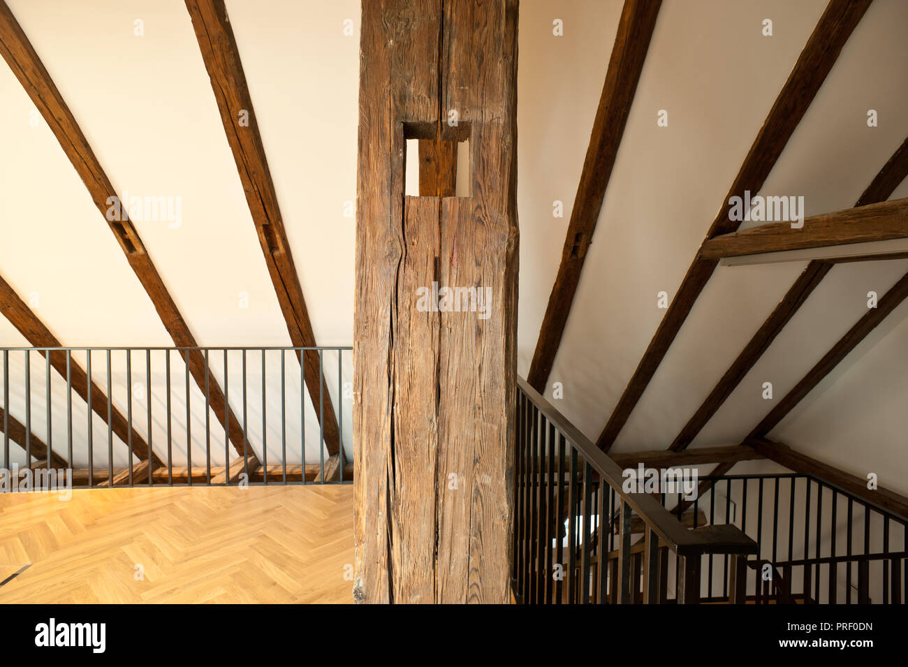 Wien, Bankgasse, Concordia-Haus, Dachbodenausbau Stock Photo