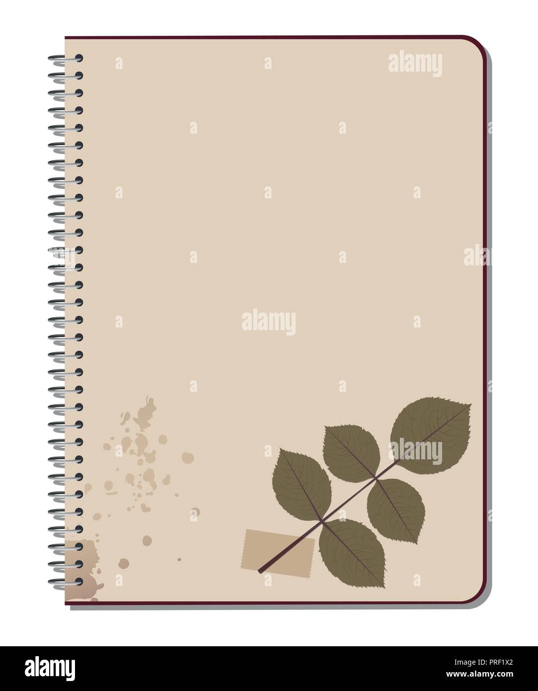 Rose bush leaves pressed on notebook. Scrap book. Vector Illustration - Stock Vector