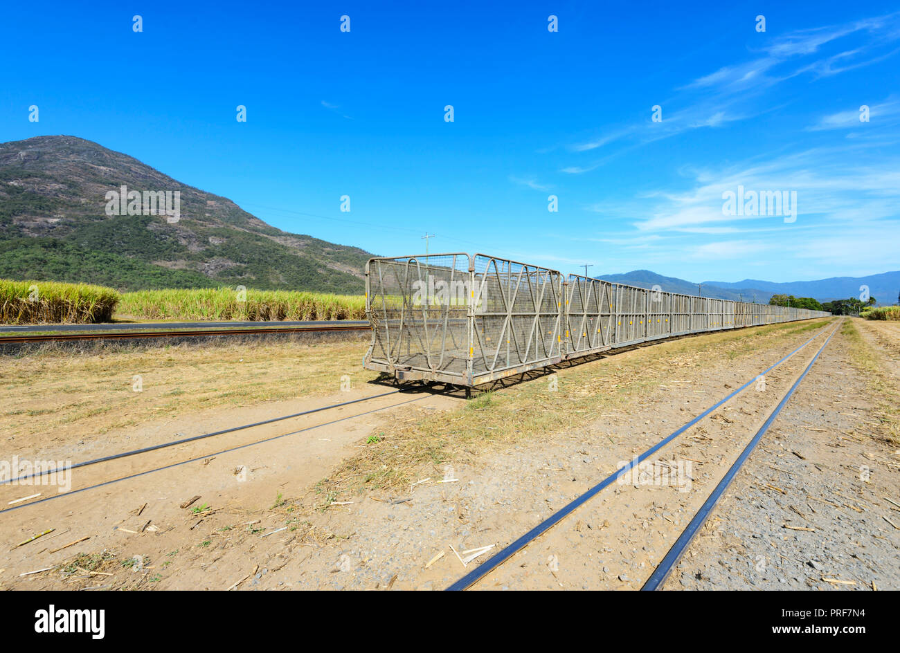 Sugarcane crop containers near Gordonvale, South of Cairns, Far North Queensland, FNQ, QLD, Australia - Stock Image