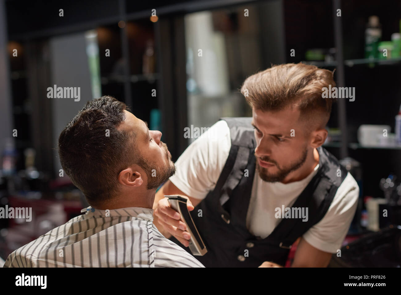 Concentrated and serious barber in white t shirt and vest holding trimmer. Handsome male hairdresser trimming client's beard. Bearded man sitting and holding head up.  - Stock Image