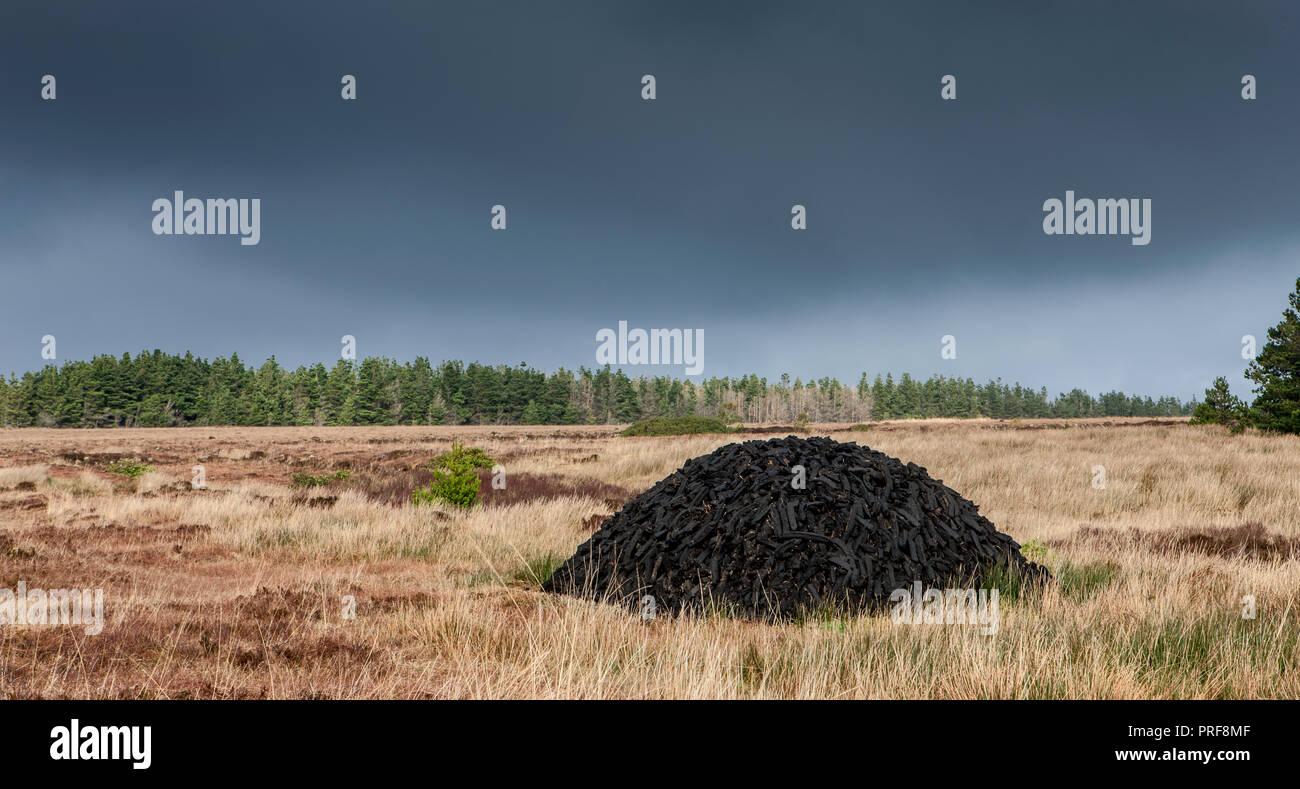 Sligo, Ireland. 30th January, 2014. Sods of turf stacked in rural county Sligo, Ireland. - Stock Image