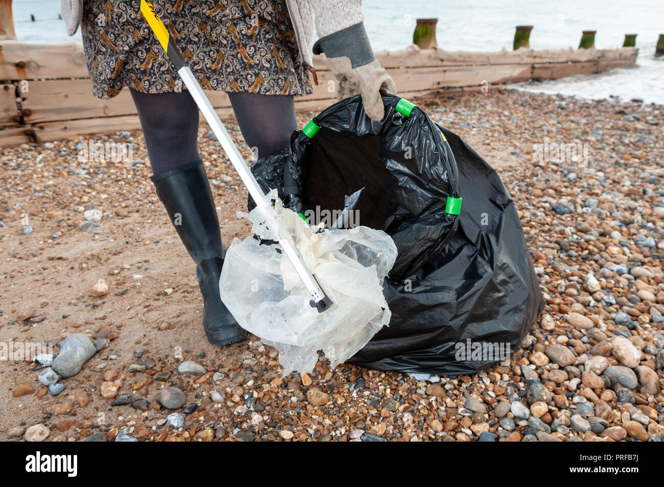 A woman using a litter picker puts plastic waste found on the beach into a black rubbish bag during a community beach clean up. - Stock Image