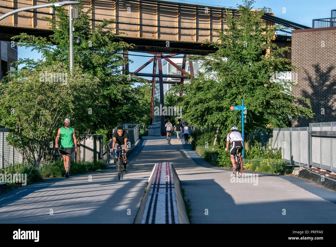 The 606, former elevated train line, greenway for pedestrians and bikers since 2015, Bloomingdale Trail, Wicker Park, Chicago, Illinois, USA - Stock Image