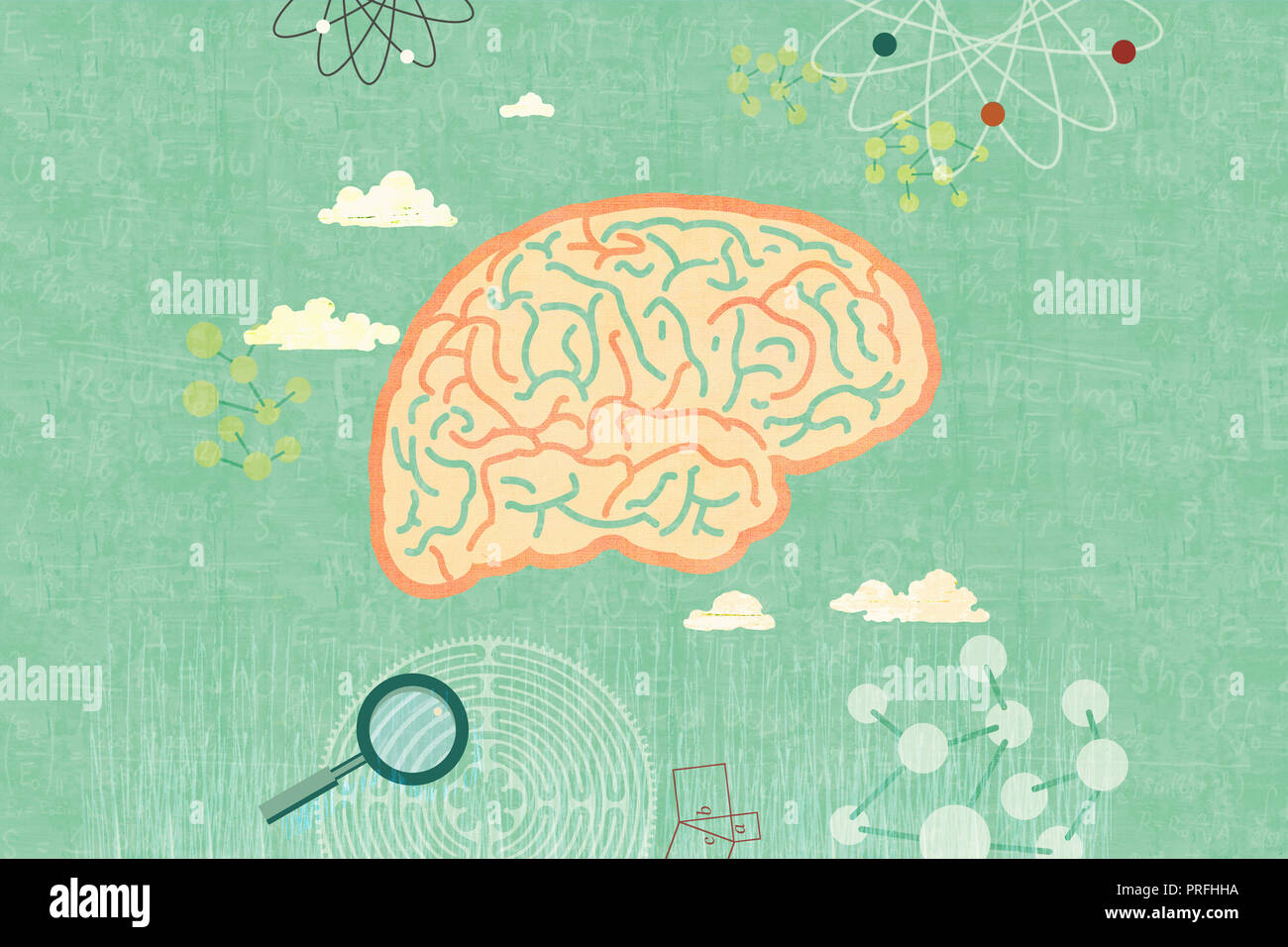 brains surrounded by scientific symbols - Stock Image