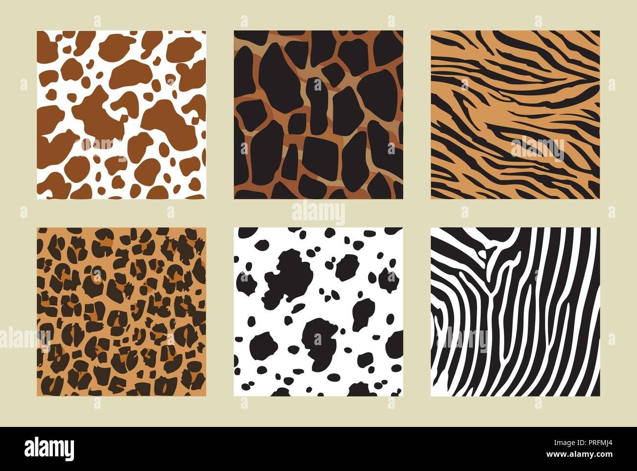 animal skin pattern. six different pattern. Vector illustration - Stock Vector