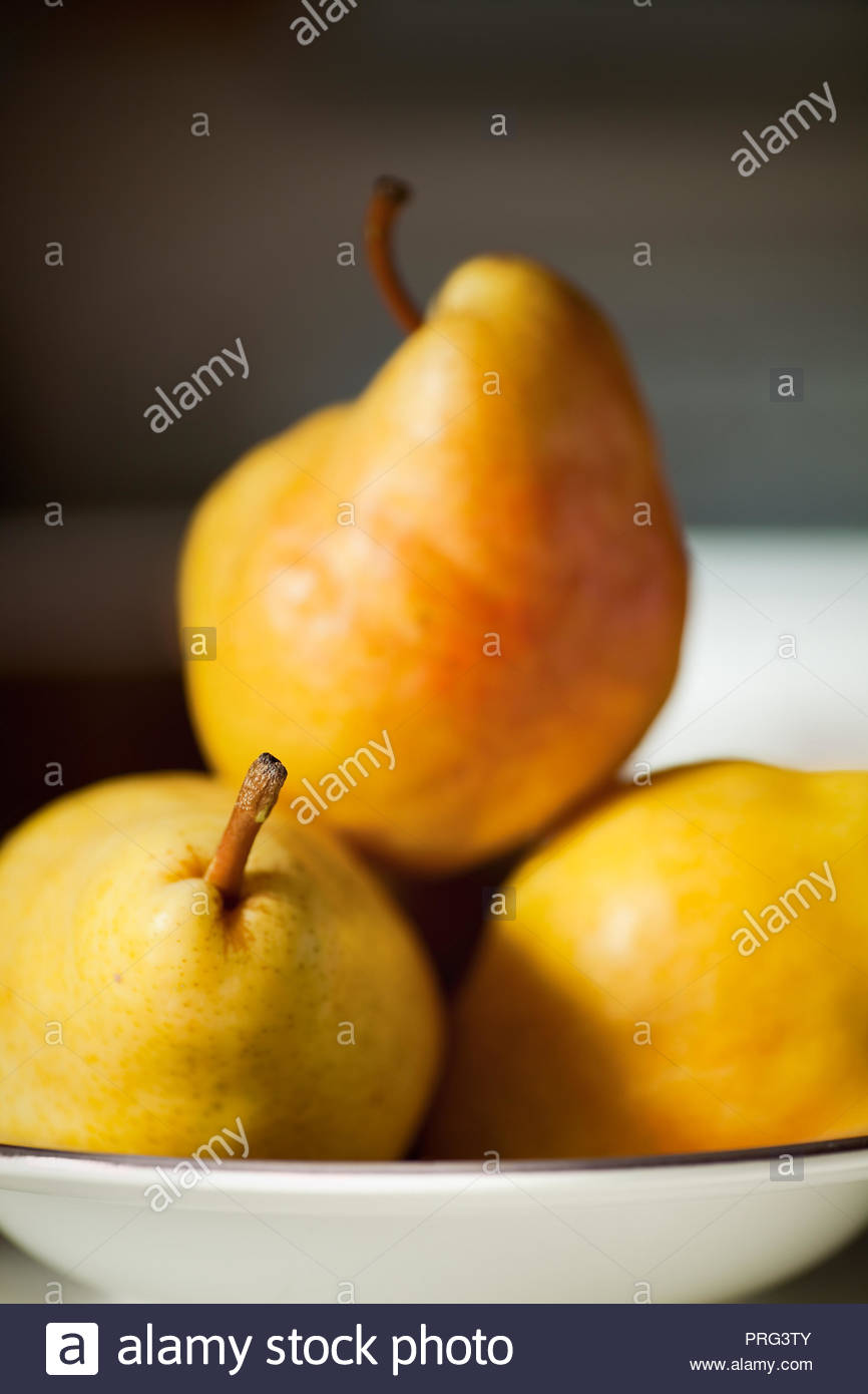 Still life photo of Bartlett Pears with selective focus. - Stock Image