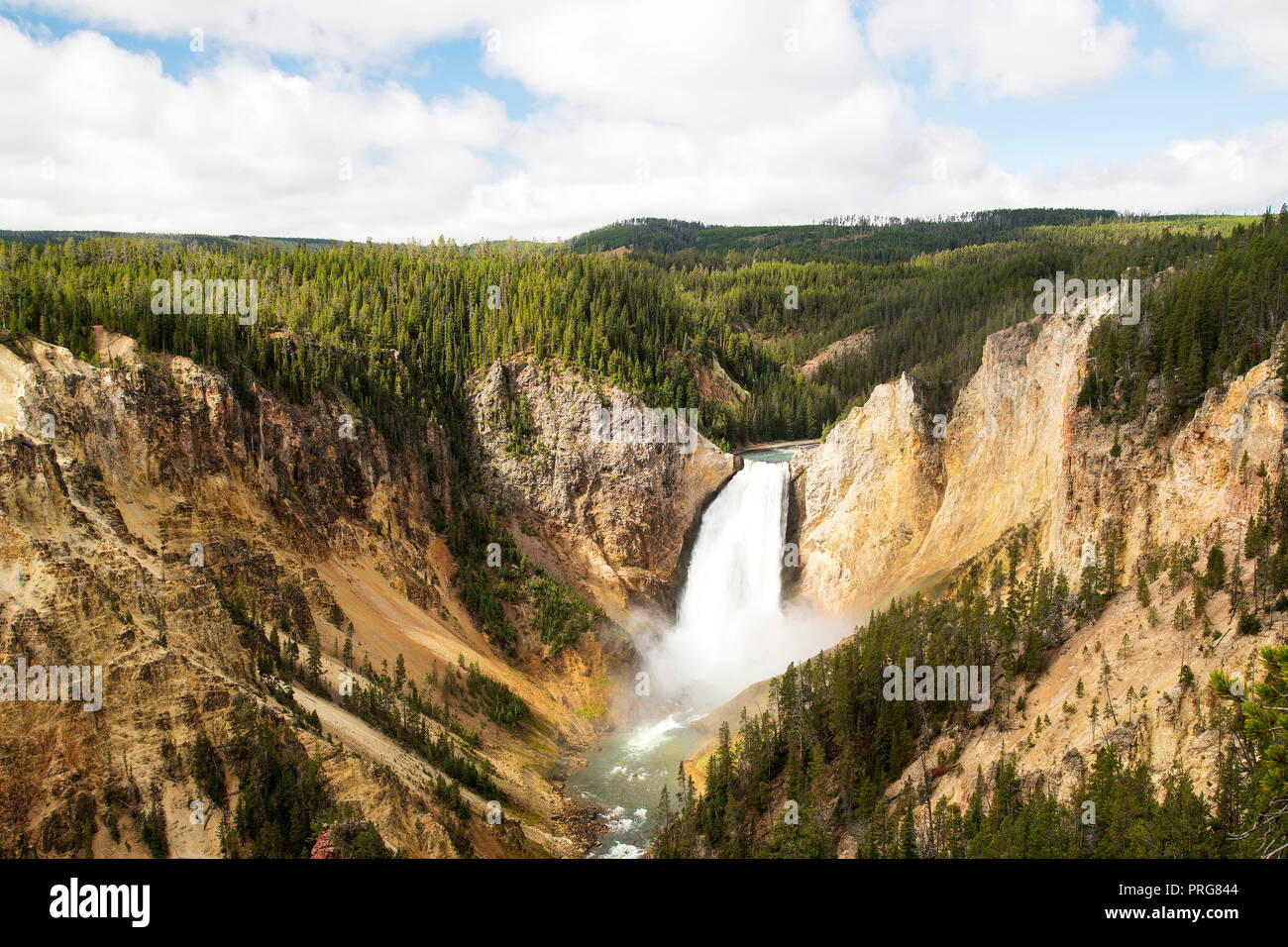 Lower Falls of the Grand Canyon of Yellowstone at Yellowstone National Park. - Stock Image
