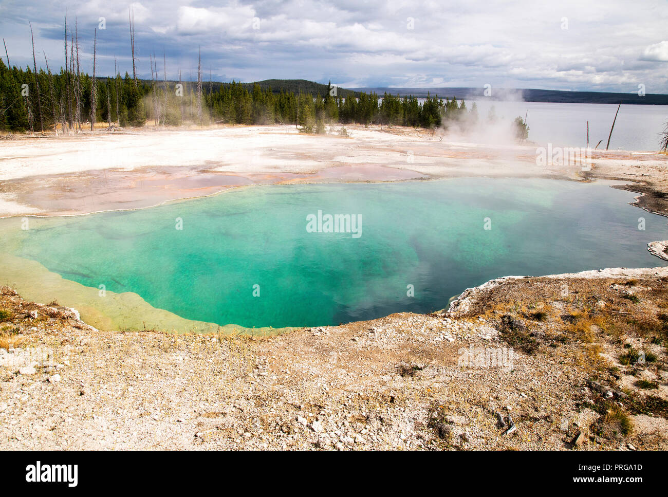 Small spring at the West Thumb Geyser Basin in Yellowstone National Park. - Stock Image