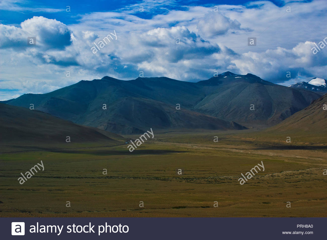 Beautiful grass land of More Plains on Leh Manali Highway. - Stock Image
