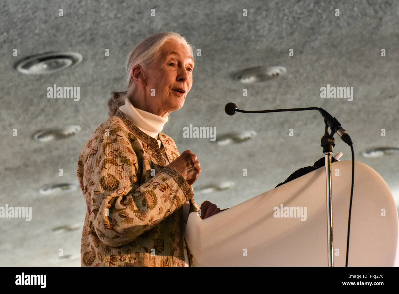 Jane Goodall at the International Conference on Sustainable Veterinary Practice. Montreal, 2016 - Stock Image