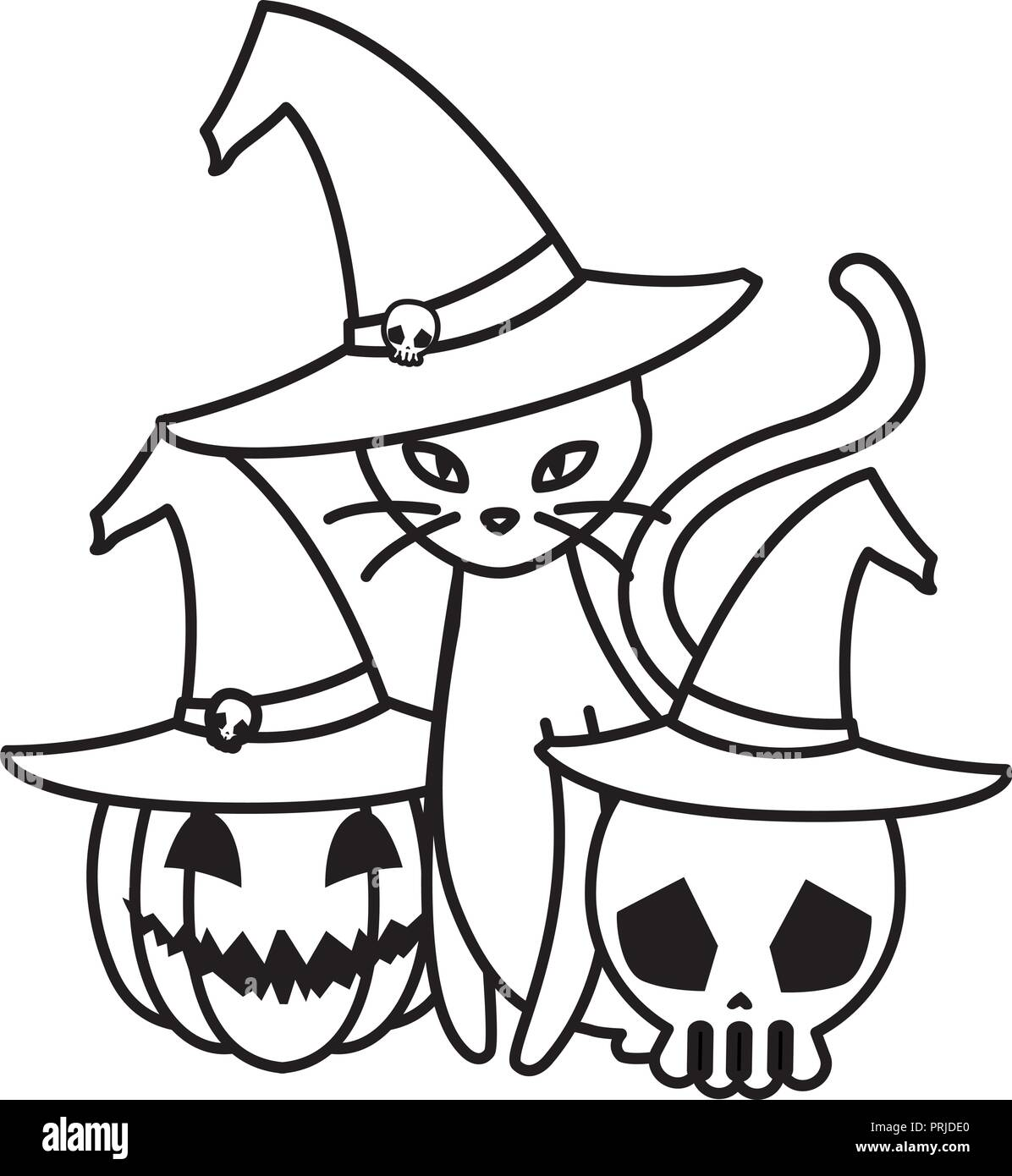 halloween black cat with pumpkin and skull vector illustration design - Stock Image