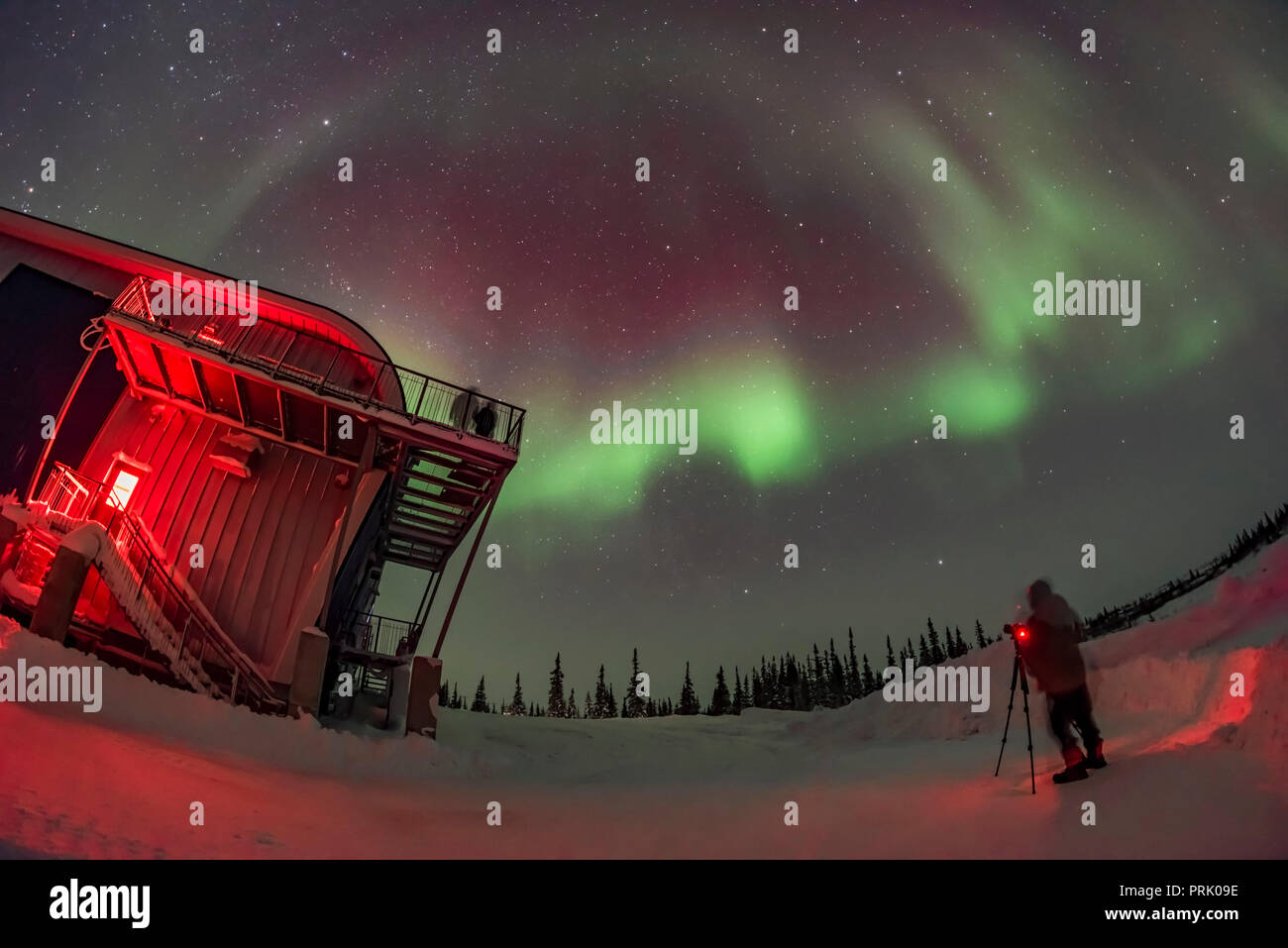 A reasonably bright display of Northern Lights appears and performs for the first aurora group of the season at the Churchill Northern Studies Centre, - Stock Image
