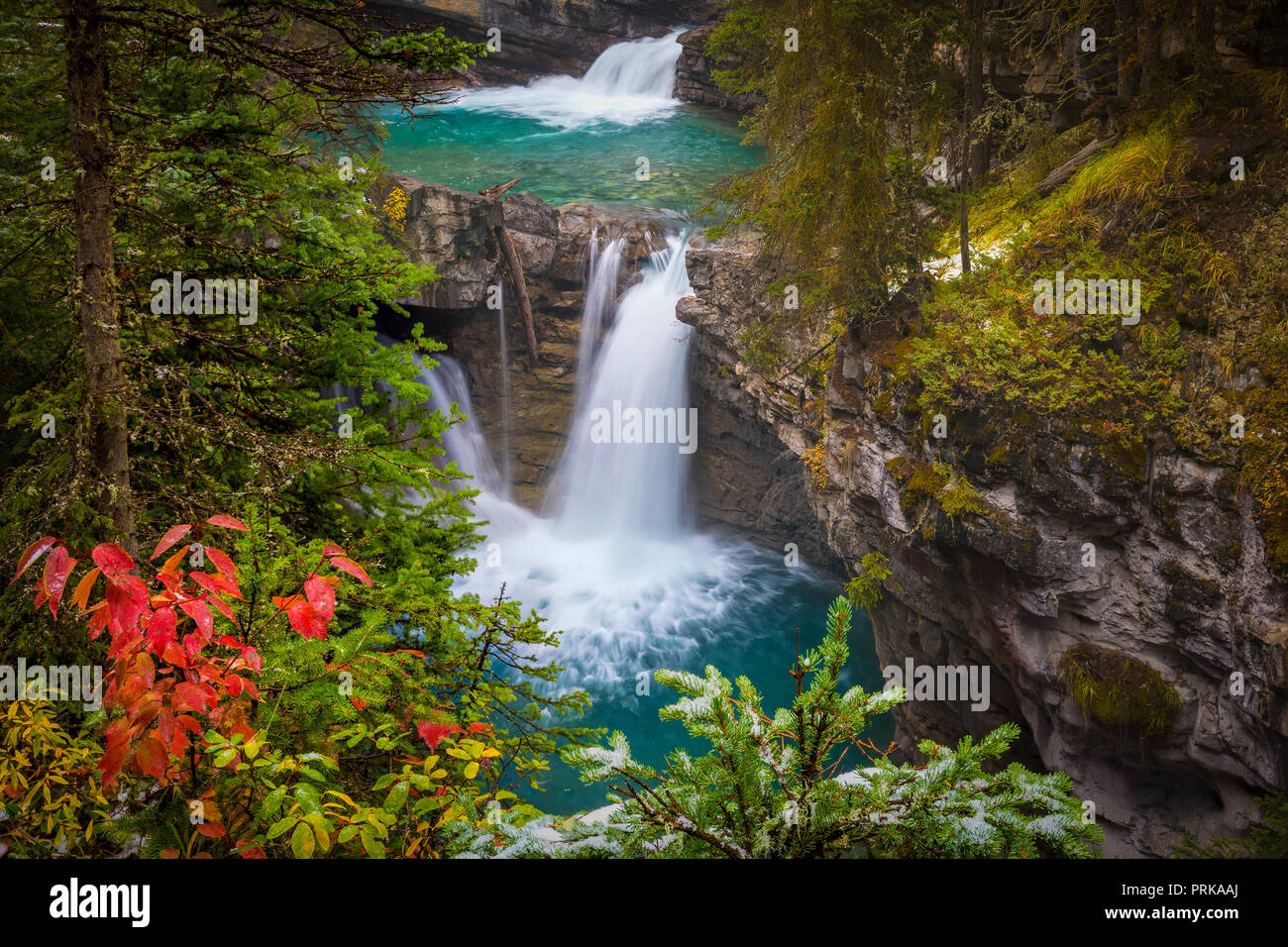 Johnston Creek is a tributary of the Bow River in Canada's Rocky Mountains. The creek is located in Banff National Park. - Stock Image