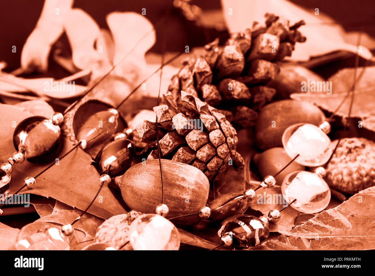 Concept autumn : Tempore autumni - Stock Image