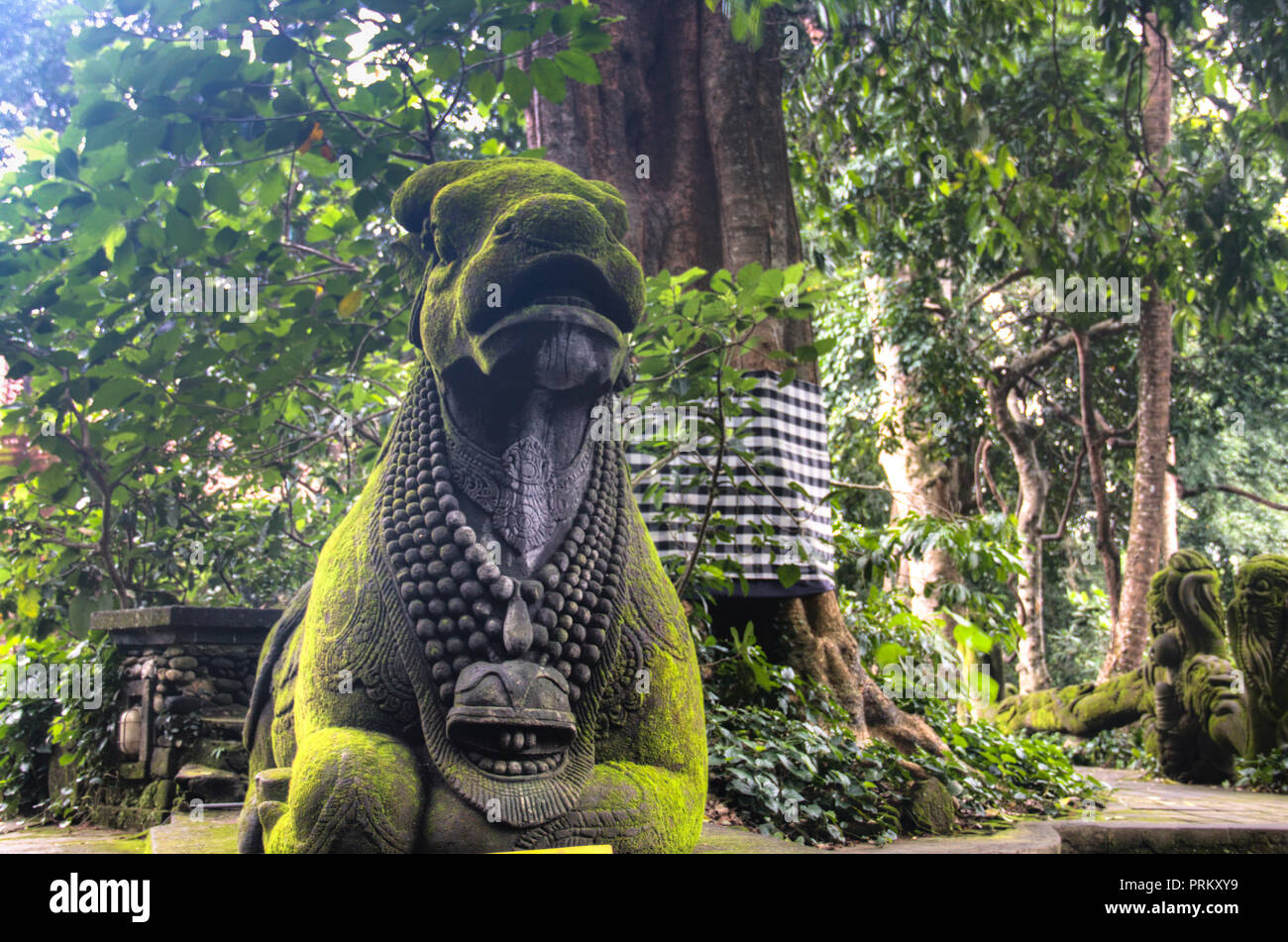 The Monkey Sanctuary Is One Of The Most Famous Tourist Spots In Ubud