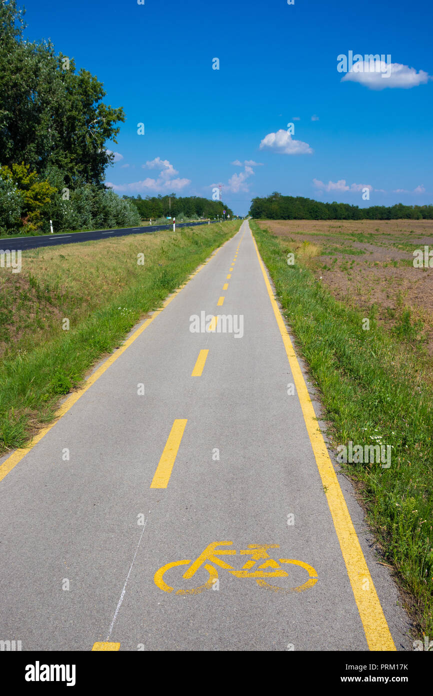 Long straight cycle way in Hungary - Stock Image