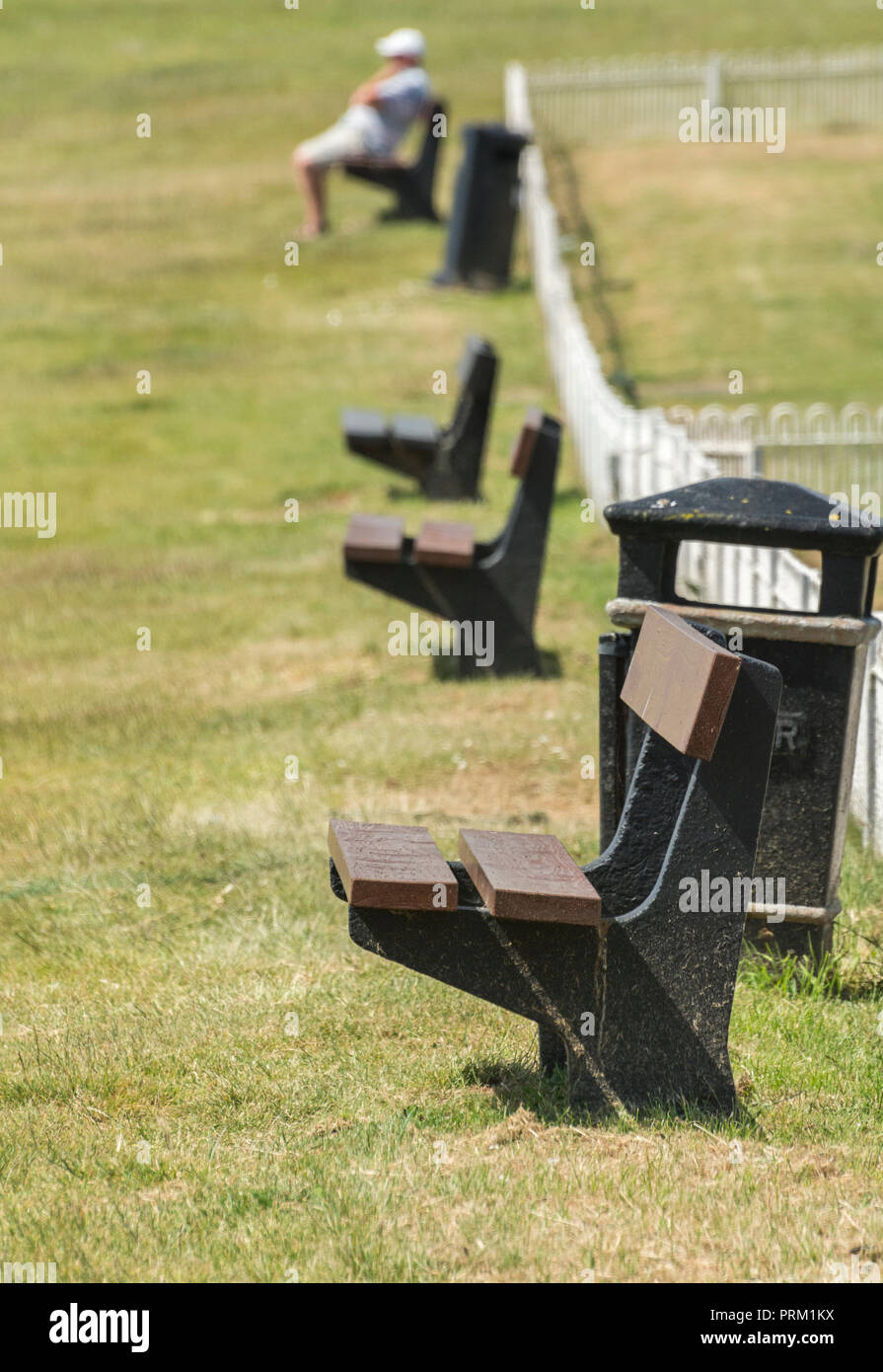 Row of bench seats in sunshine - with perhaps the invisible character taking a nap. Staycation Cornwall concept. - Stock Image