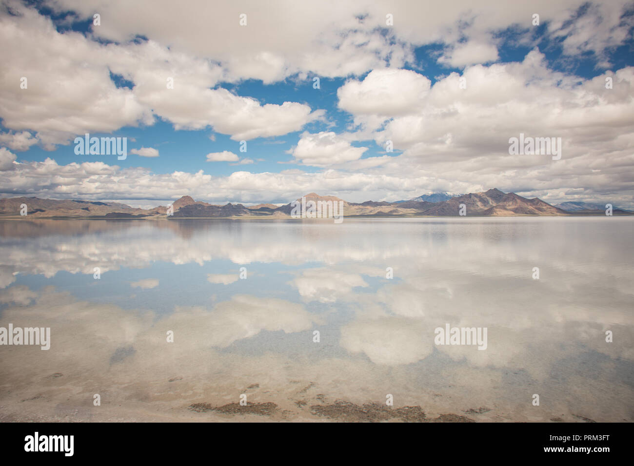 Wide angle view of Bonneville Salt Flats in Utah create a mirror reflection scene on the water, looking surreal Stock Photo