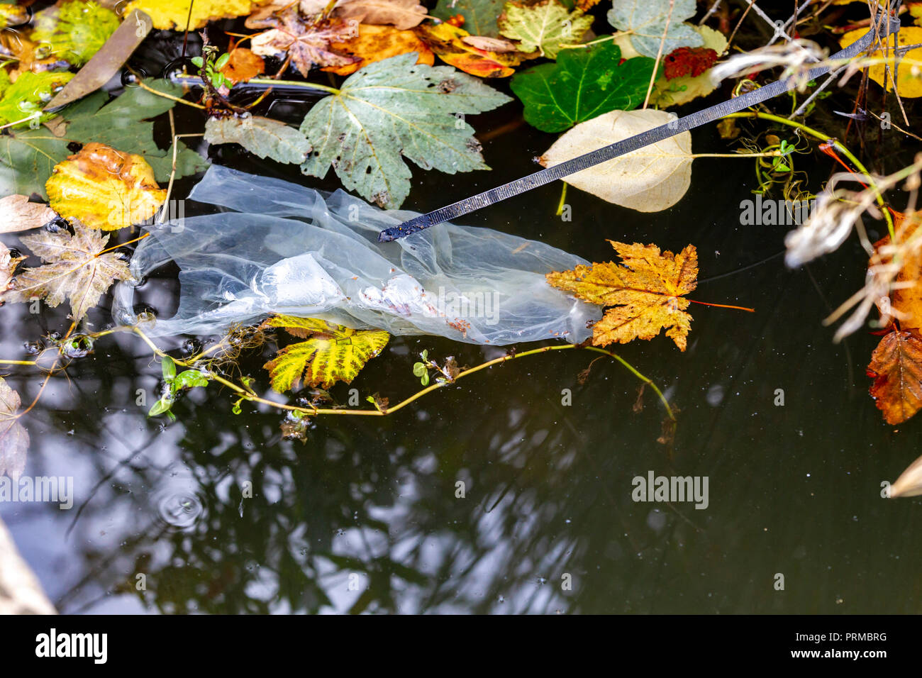 Northampton. U.K.3rd October 2018,  Food and drink waste thrown on the ground and in the park lake, photos taken on a 20min walk in the park. - Stock Image