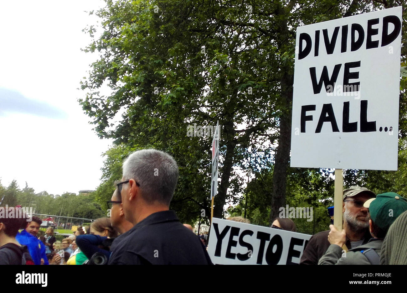 London UK, 2nd July 2016. 'March for Europe', Anti-Brexit protest. A protester holds a sign saying 'Divided we fall'. - Stock Image