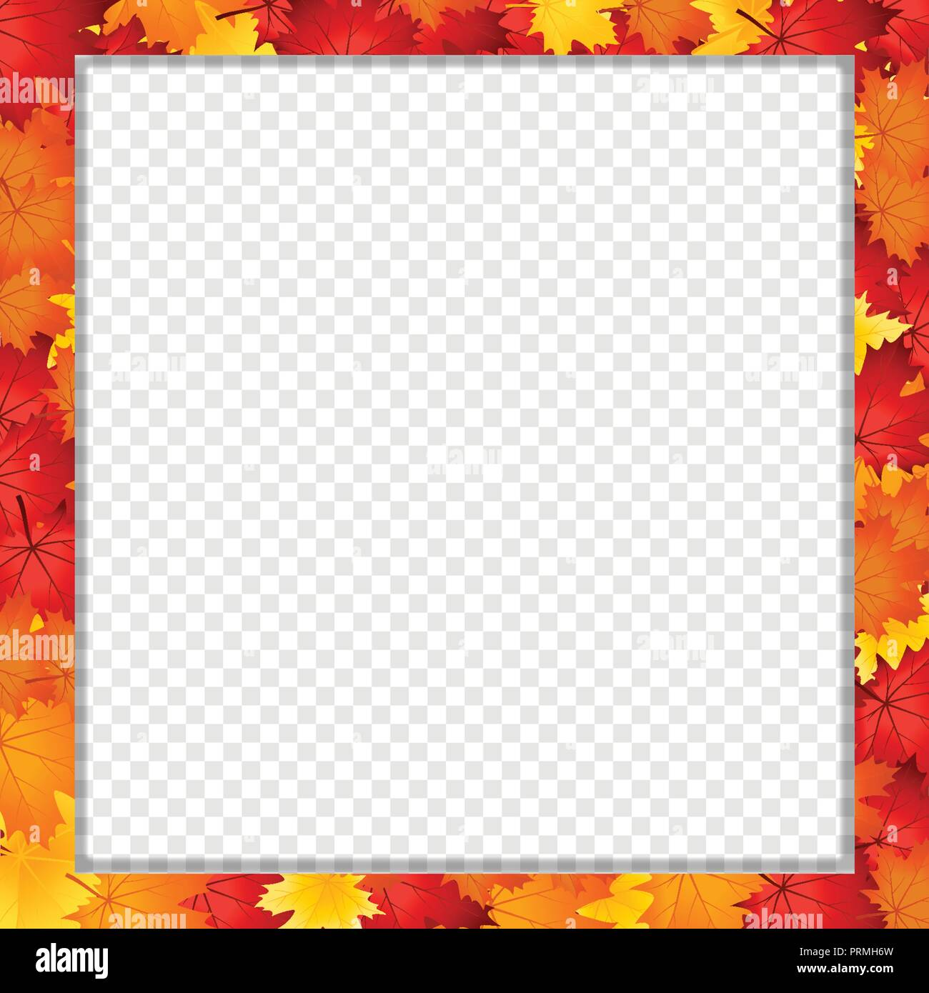 Vector Square Photo Frame Border With Fallen Autumn Leafage On