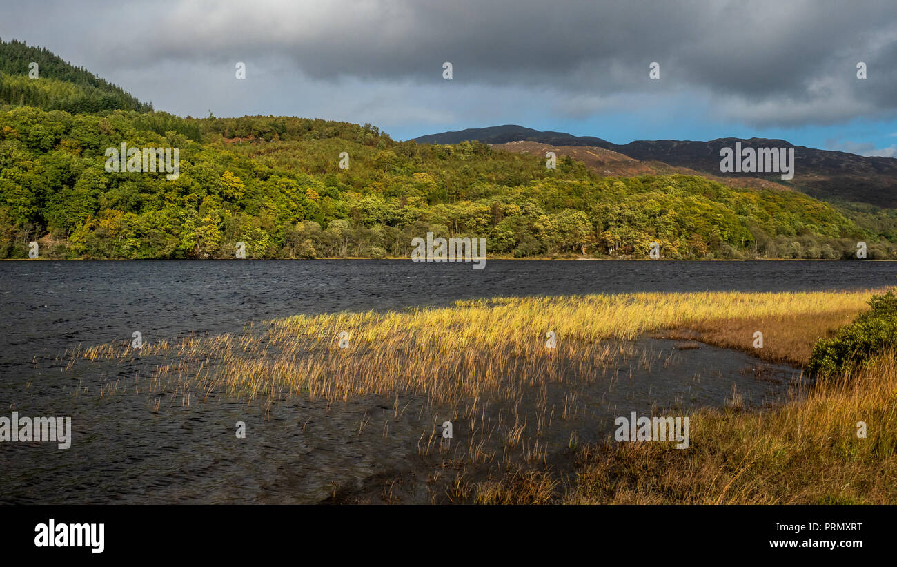 Stormy weather on the beach at Loch Achray  on an autumnal day whilst on The Three Lochs drive In the Trossachs National Park in Scottish Highlands - Stock Image