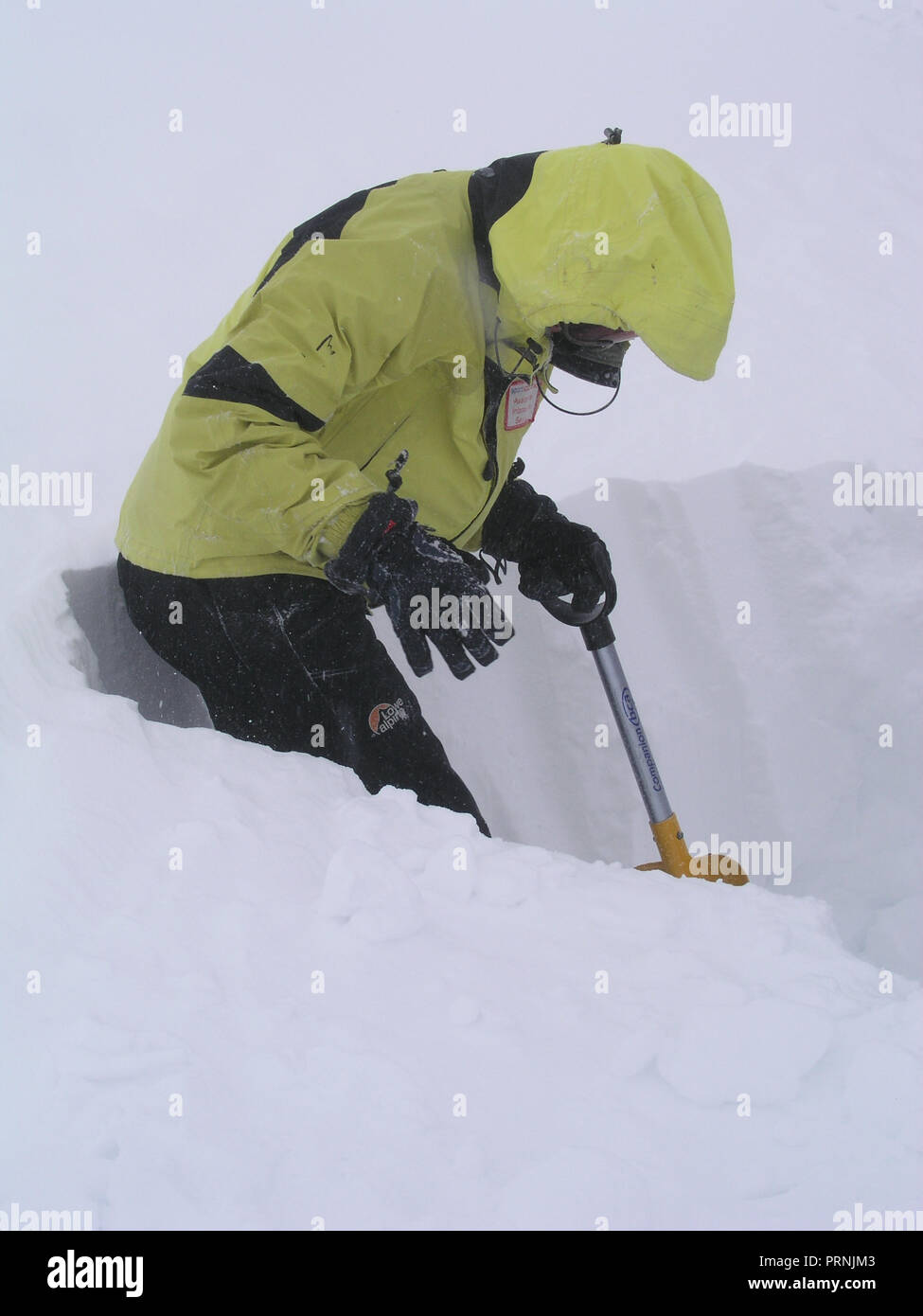 A member of the Scottish Avalanche Information Service carrying out observations on the snow pack stability in the Cairngorm National Park - Stock Image
