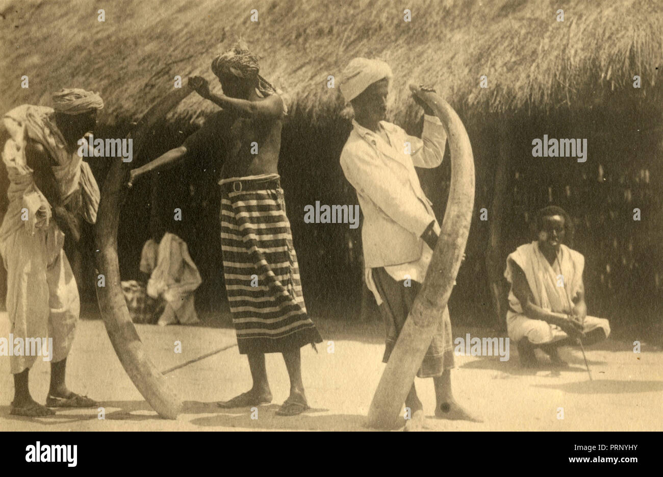Ivory merchants, Gelito 1933 - Stock Image