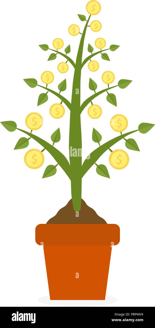 Growing money tree with gold coins in ceramic pot. Symbol of success, wealth and power. Finance and banks, savings and investments, business concept presentations on white background. - Stock Image