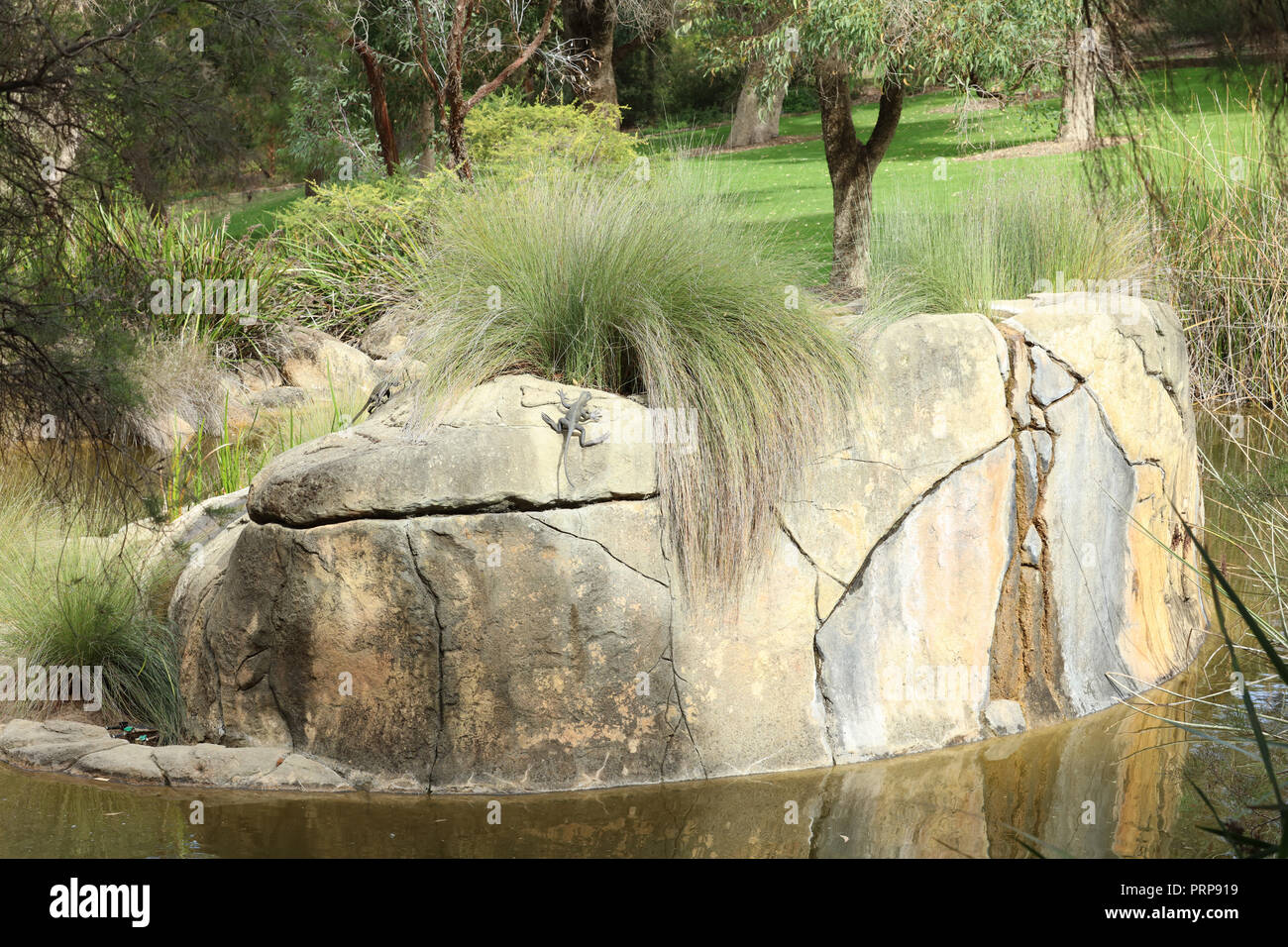 Western Australian Botanic Garden, Kings Park, Perth with ancient rocks representing The Darling Scarp streams and 2.5 billion years old rocks. - Stock Image