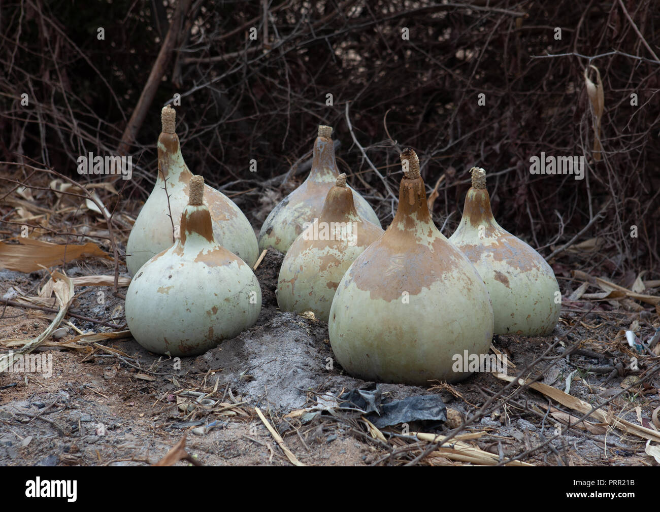 Calabashes used to cook food on fire, Namibe Province, Virei, Angola - Stock Image