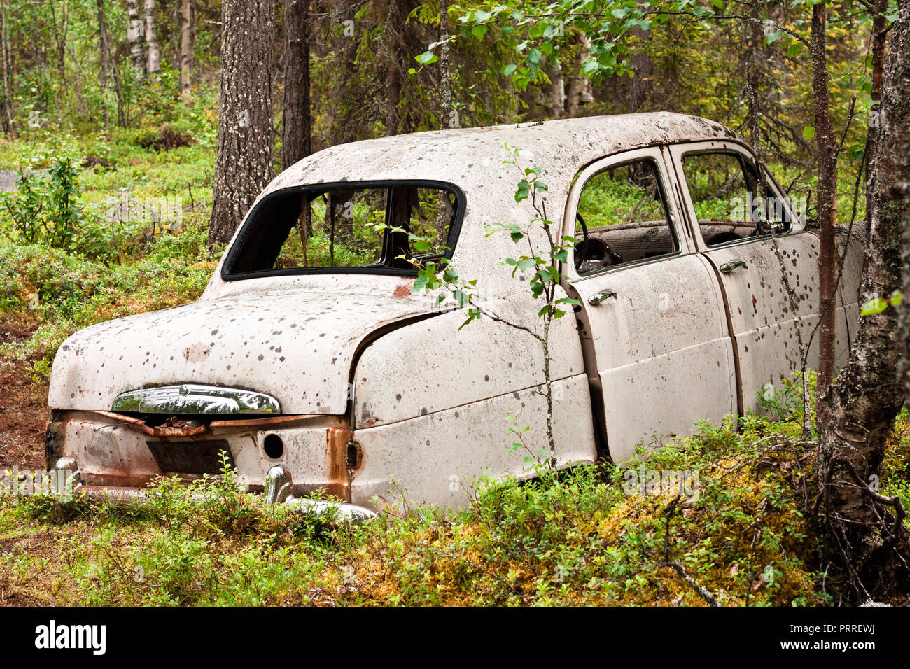 Abandoned rusted car deep in the forest - Stock Image