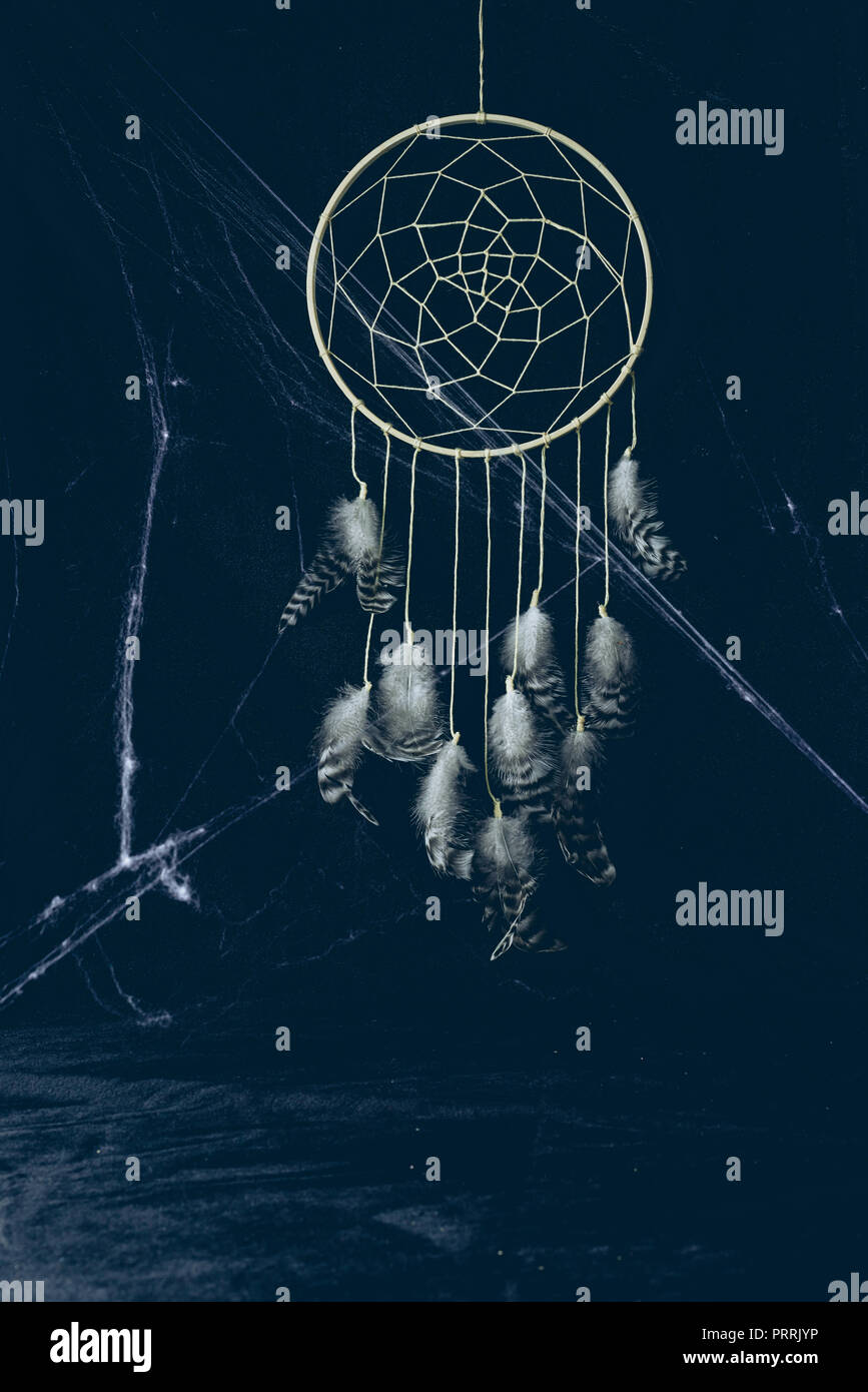 gothic dreamcatcher with feathers in darkness with spider web for halloween - Stock Image