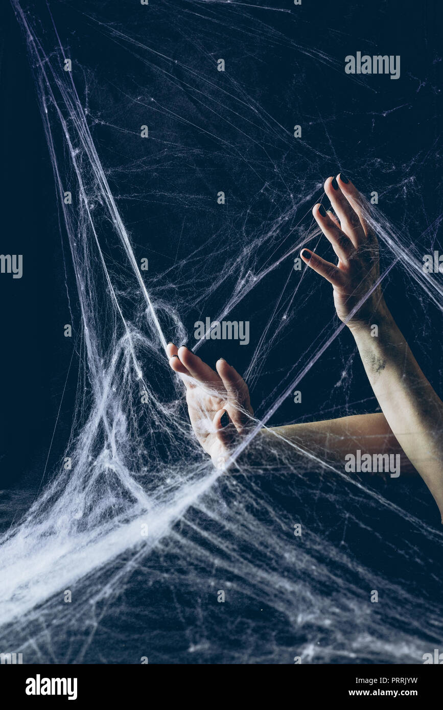 cropped view of gothic woman with hands in spider web in darkness - Stock Image