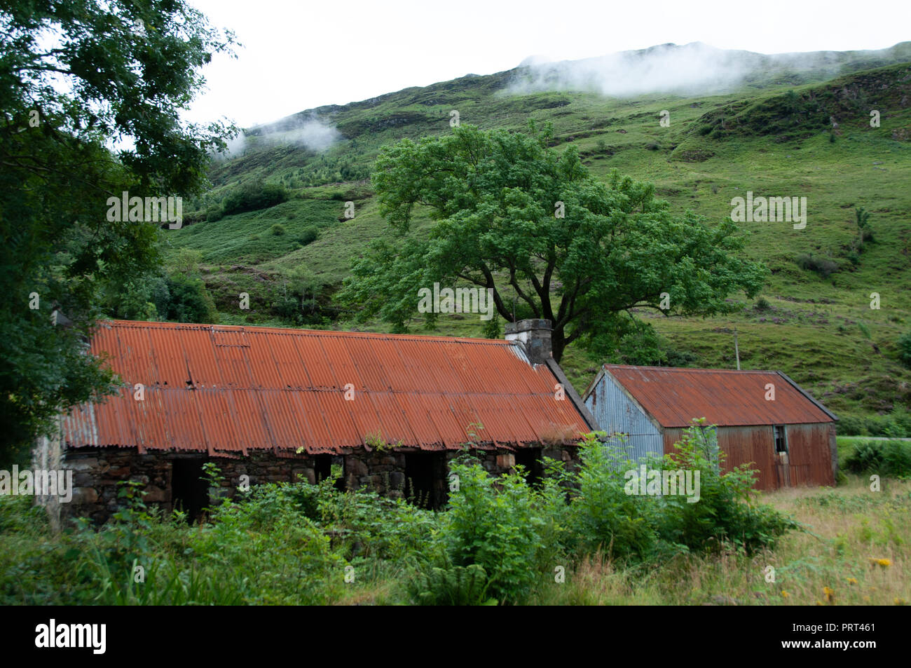 Feeling of age, timelessness and neglect through rusty orange corrugated iron roofs against the bright green foliage, trees and hills of Scotland - Stock Image