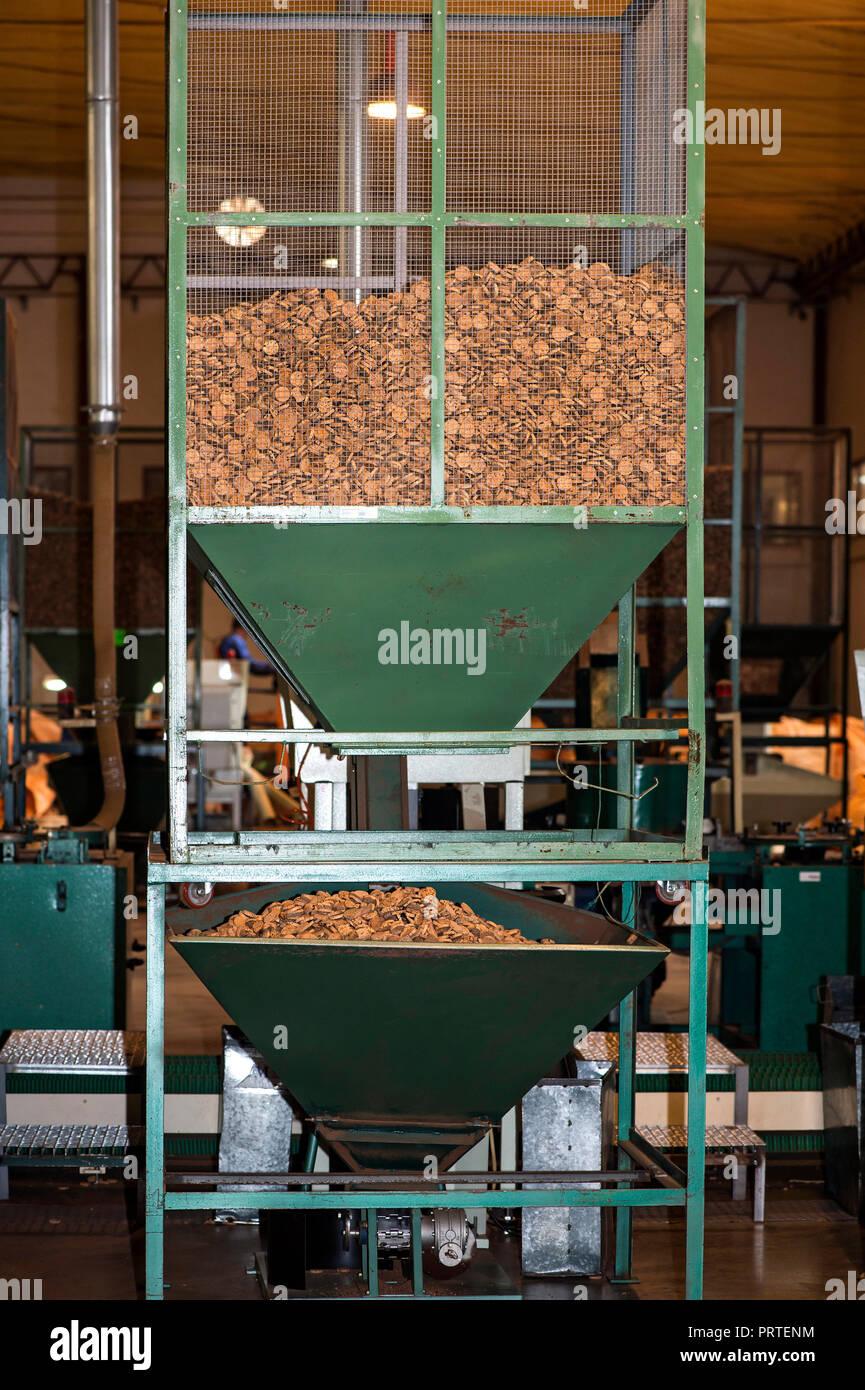 Processing of cork oak bark to disc for champagne corks,  Cork factory Nova Cortica, Sao Bras de Alportel, Algarve, Portugal - Stock Image
