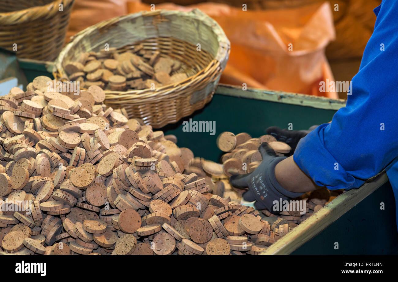 Discs made of bark of the cork oak (Quercus suber) for the production of corks for champagne bottles, Cork factory Nova Cortica, Sao Bras de Alportel, - Stock Image